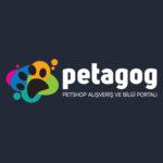 Petagog